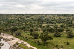 Meadows of Tanzania with river Royalty Free Stock Images