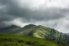 Meadows on the top of a mountain. A lush green paya meadows at the top of Shogran in Kaghan Valley Pakistan stock photo
