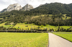 Meadows with train. In Switzerland. Alpine mountains in the background are on a cloudy day Royalty Free Stock Image