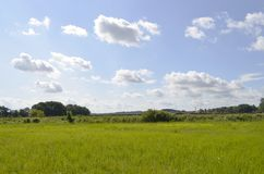 Meadows and trees on the Baltic Sea Island Usedom, Germany, under a blue sky with white clouds and a railroad embankment at the ho. Rizon Stock Photos