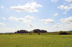 Meadows and trees on the Baltic Sea Island Usedom under a blue sky with white clouds and a railroad embankment at the ho. Meadows and trees on the Baltic Sea Stock Image