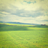 Meadows of Tuscany Stock Image