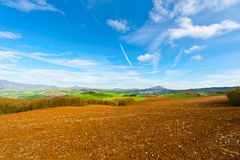 Meadows of Tuscany Royalty Free Stock Photo