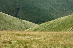Meadows in Ukraine. Nice meadows in Ukraine cloce to Kolotschava Stock Photography