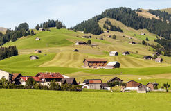 Meadows with wooden houses. In Switzerland. Alpine mountains in the background are on a cloudy day Royalty Free Stock Image
