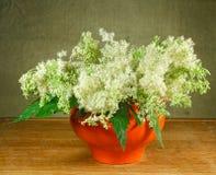 meadowsweet 1 ζωή ακόμα Ανθοδέσμη των λουλουδιών λιβαδιών στο πορτοκαλί δοχείο Στοκ Εικόνες