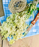 Meadowsweet fresh with knife and twine on board Royalty Free Stock Images