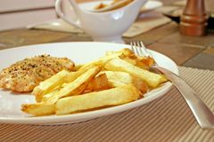 Meal. Salmon and herbs with homemade french fries Royalty Free Stock Image