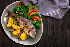 Meal.Baked Dorado fish with vegetables in the oven. On a dark background royalty free stock photos