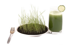 Meal  from a chlorophyll. Dietary set of meal for a dinner on a white background Royalty Free Stock Photo