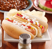 Meal with hot dogs with onion and conidments Royalty Free Stock Photos