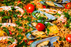 Meal of mussels, prawns and rice Royalty Free Stock Photo