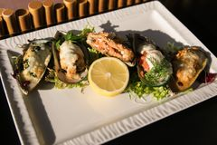 A meal of oysters with lemon and sauce. Plate with mediterranean seafood dish black shell mussels with herbs. royalty free stock photography