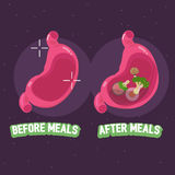 Before and after meal of stomach. how to take pills concept - ve Royalty Free Stock Photography