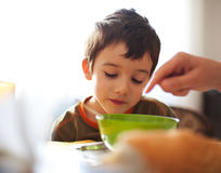 Meal time Stock Images