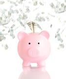 Mealheiro cor-de-rosa com chuva do dinheiro Fotografia de Stock Royalty Free