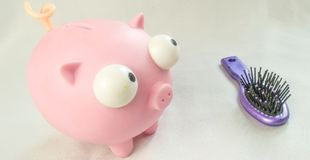 Mealheiro e escova de cabelo pequena Imagem de Stock Royalty Free