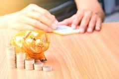 Mealheiro, moedas e mulher que usa a calculadora na tabela de madeira Fotografia de Stock Royalty Free