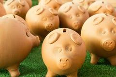 Mealheiro - porcos da economia do dinheiro Fotos de Stock
