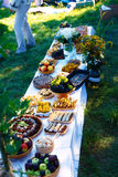 Meals on table of abundance as a part of natural wedding ceremony held in nature. Meals on table of abundance as a part of natural wedding ceremony held in Stock Image