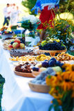 Meals on table of abundance as a part of natural wedding ceremony held in nature. Meals on table of abundance as a part of natural wedding ceremony held in Stock Photography
