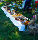 Meals on table of abundance as a part of natural wedding ceremony held in nature. Meals on table of abundance as a part of natural wedding ceremony held in Royalty Free Stock Image