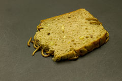 Mealworm eat bread Royalty Free Stock Photography