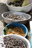 Mealworms and Shellfish at Market in Sapa, Vietnam Royalty Free Stock Photos