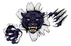 Mean Black Panther Mascot. A black panther cartoon sports mascot ripping through a wall with his claws Royalty Free Stock Photography