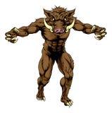 Mean boar mascot Stock Photos