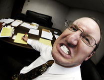 Mean Boss in Office. Mean looking man in business office gritting teeth Royalty Free Stock Photo