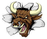 Mean bull breakout. Drawing of a tough angry bull character Royalty Free Stock Photo