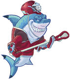 Mean Cartoon Lacrosse Shark with Equipment. Vector cartoon clip art illustration of a tough mean smiling shark mascot wearing a lacrosse uniform and an ill Stock Photos