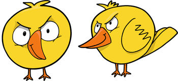 Mean Chick Vector. Yellow Mean Chick Vector Illustration Stock Photography