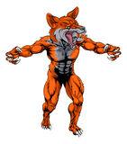 Mean fox sports mascot. An illustration of a fox animal sports mascot cartoon character Stock Images