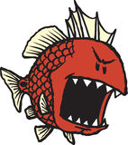 Mean Red Fish. A loosely cartooned Red fish with sharp, pointy fangs Stock Photos