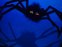 Mean Spider. Great mean looking, big, black spider for Halloween Stock Photography
