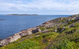 Mean vegetation of the island, rocks, sea, blue sky. Royalty Free Stock Images