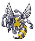 Mean wasp or hornet mascot. A mean looking hornet wasp or bee mascot character cartoon illustration royalty free illustration