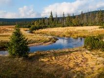 Meander of Jizerka creek Stock Photo