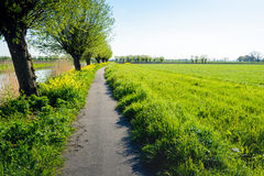 Meandering bike path in a rural field in springtime Stock Photos