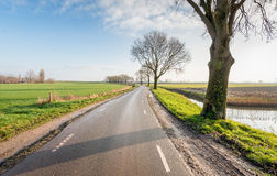 Meandering country road in the fall season Royalty Free Stock Images