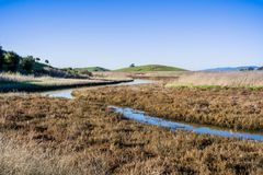 Meandering creek and marsh landscape royalty free stock images
