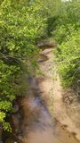 Meandering Creek Stock Photography
