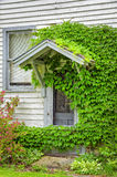 Meandering Ivy Around Door of Old House Stock Images