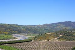 Meandering river next to vineyard in Spain. Meandering river in beautiful countryside next to vineyard in Spain on a sunny day royalty free stock photography
