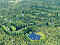Meandering river in siberian taiga Royalty Free Stock Image
