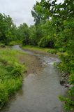 Meandering stream stock photography