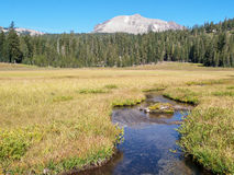 Meandering stream in meadow with mountain Royalty Free Stock Image