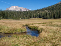 Meandering stream in meadow with mountain Stock Images